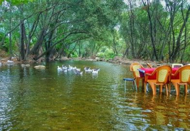 Misi Köyü'nde Piknik Keyfi Yapın!